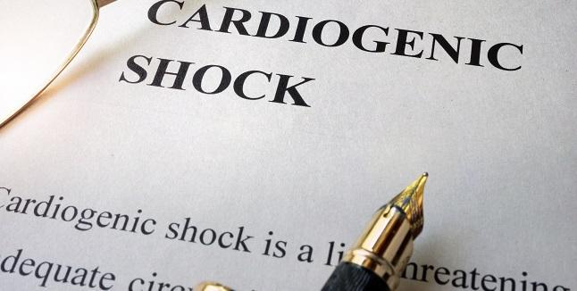 SCAI Shock Definition Tracks Well With Mortality in Cardiac ICU