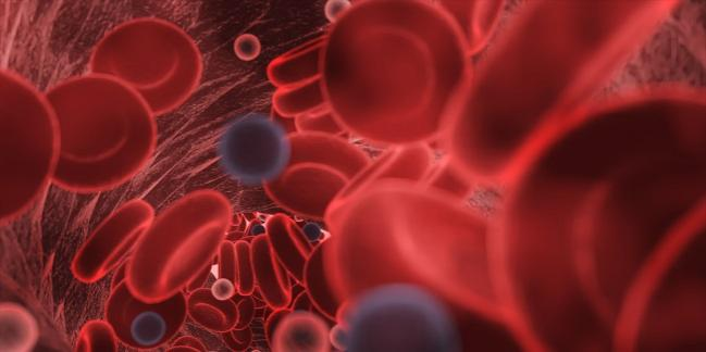 Study Affirms Thrombotic Risk in COVID-19