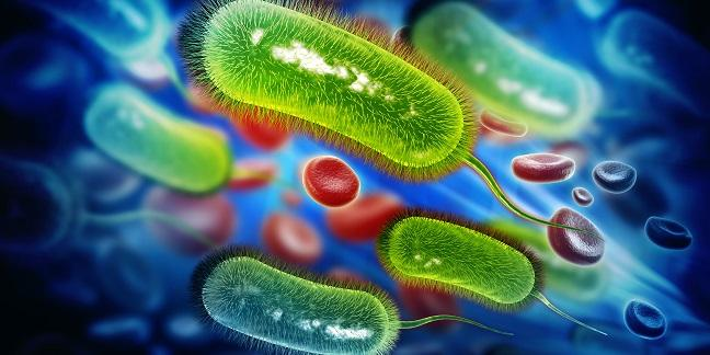 H. Pylori in ACS: Could Tests and Treatment Beat Back the Bleeds?