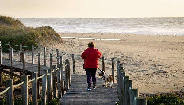 AHA: Physical Activity Should First-line Therapy as BP, LDL Tick Upwards