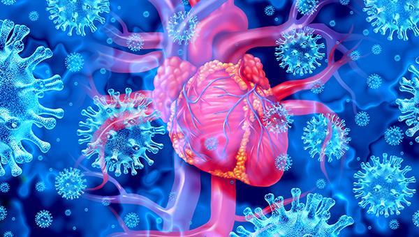 Studies Highlight Rarity of Myocarditis With mRNA COVID-19 Vaccines