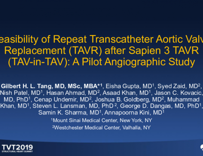 Feasibility of Repeat Transcatheter Aortic Valve Replacement (TAVR) After Sapien 3 TAVR (TAV-in-TAV): A Pilot Angiographic Study