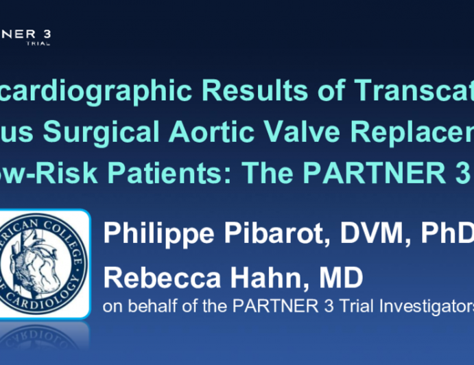 Echocardiographic Results of Transcatheter Versus Surgical Aortic Valve Replacement in Low-Risk Patients: The PARTNER 3 Trial