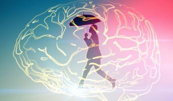 Cerebral Embolic Protection Use Low During TAVI, Not Tied to Stroke Risk