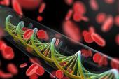 Lp(a) and LPA Genetic Risk Score Both Predict Incident ASCVD: UK Biobank