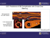 Intravascular Coronary Imaging & Physiology 2019: A Clinical Workshop