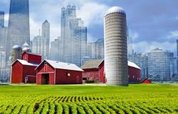 Rural-Urban Gap Widens for Cardiometabolic Health Disparities