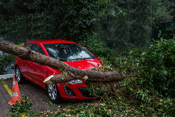 carregistrationadvisors.org blog: CarRegistrationAdvisors.org Explains How to Protect Your Vehicle Ahead of a Natural Disaster