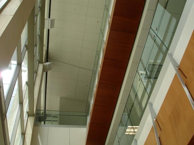 mineral fiber ceilingsX