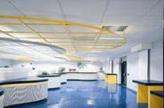 Decorative Suspension System