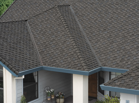 Collection of Shingles
