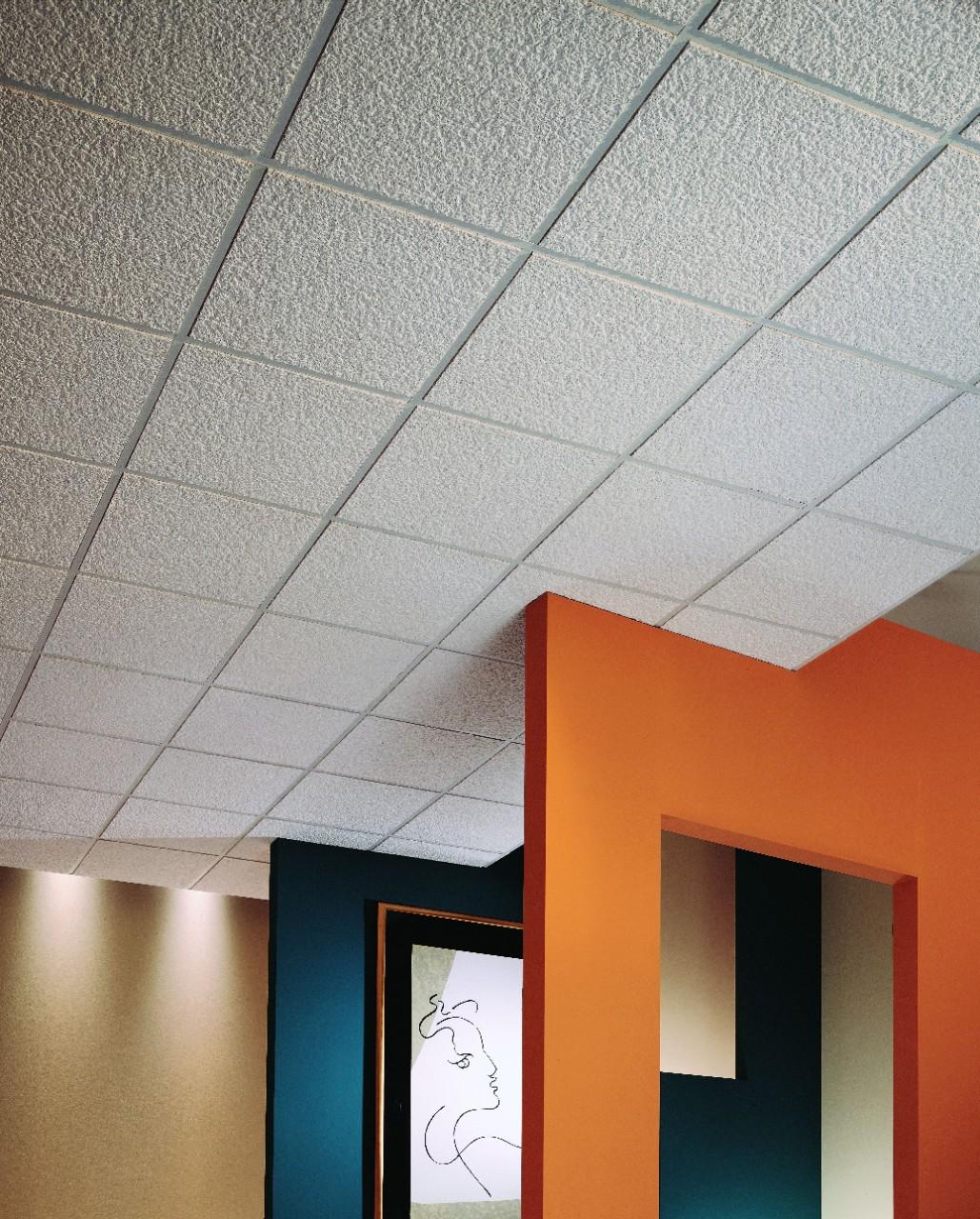 Acoustical Ceiling Panels-2
