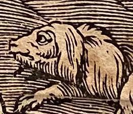 The Deluge, 15th Century Old Master Print (after) Leonardo Da Vinci