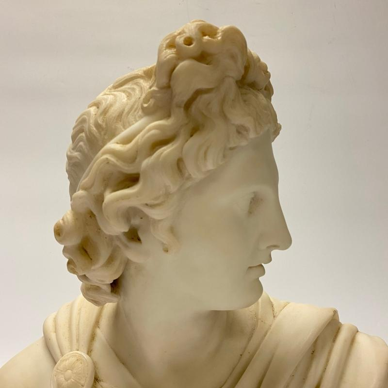 Marble Bust of Apollo