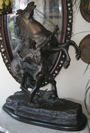 Large Marly Horse Bronze Sculpture After Coustou
