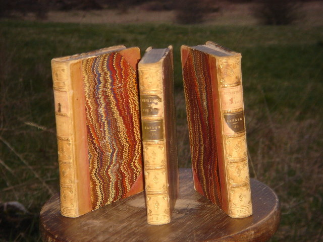 ANTIQUE ROADSHOW Artifacts _GENUINE _Original _Antique Books  ~Set of 3 Leather Bound  ~ EXPEDITION TO THE NIGER by Richard and John Lander CIRCA 1832 Rare Find in Beautiful Condition for age  ~ 4