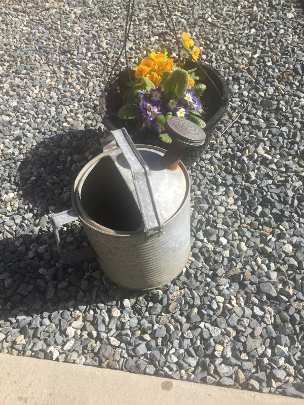 1940s RIBBED Galvanized GARDENING WATERING CAN with Brass Sprinkler affixed to spout. Holds water for awhile. as found