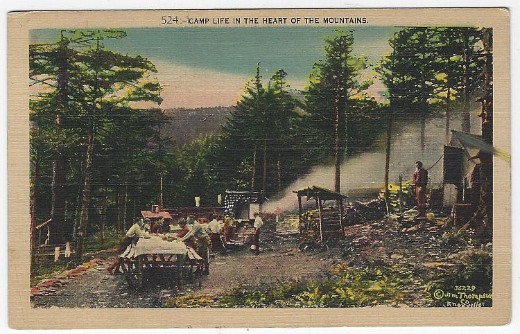 Camp Life in the Heart of the Mountains Knoxville Vintage Unused Postcard