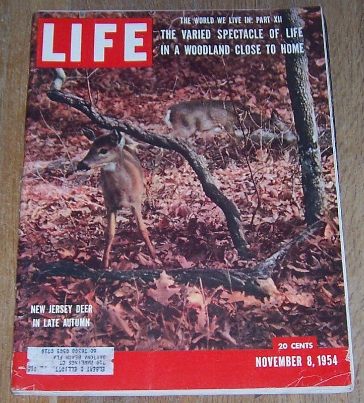 Life Magazine November 8, 1954 World We Live in/Hemingway/Picasso/Edna Chase