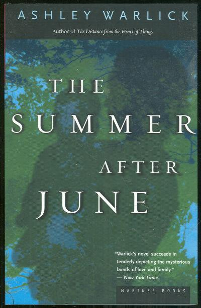 Summer After June by Ashley Warlick 2000 1st edition Southern Novel