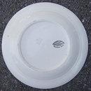 Homer Laughlin Nautilus Cardinal Decorated Plate