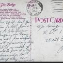 Vintage Postcard of Zia Lodge, Albuquerque, New Mexico D. Ewing Wilcox 1953