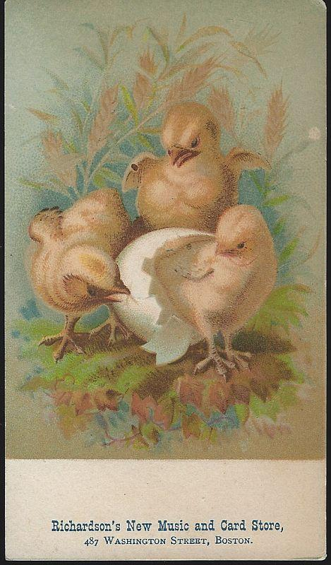 Victorian Trade Card for Richardson's Music and Card Store Boston with Chicks