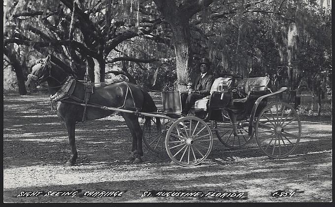 Vintage Unused Real Photo Postcard Sight Seeing Carriage, St. Augustine, Florida