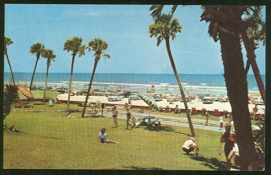 Postcard of Beach and Palms Daytona Beach, Florida