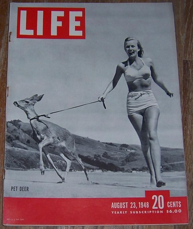 Life Magazine August 23, 1948 Pet Deer on Cover/John Dos Passos/Olympics/Sweden
