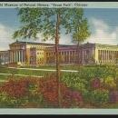Field Museum of Natural History, Grant Park, Chicago, Illinois Vintage Postcard