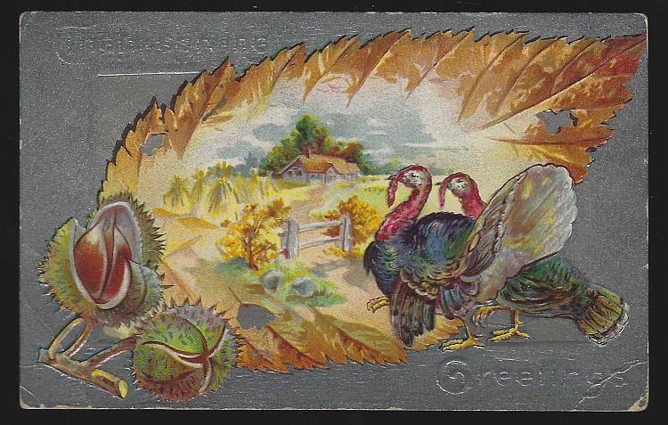 Vintage Thanksgiving Greetings Postcard Turkeys in Leaf and Autumn Landscapes