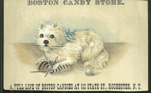 Victorian Trade Card for Boston Candy Store with Dog
