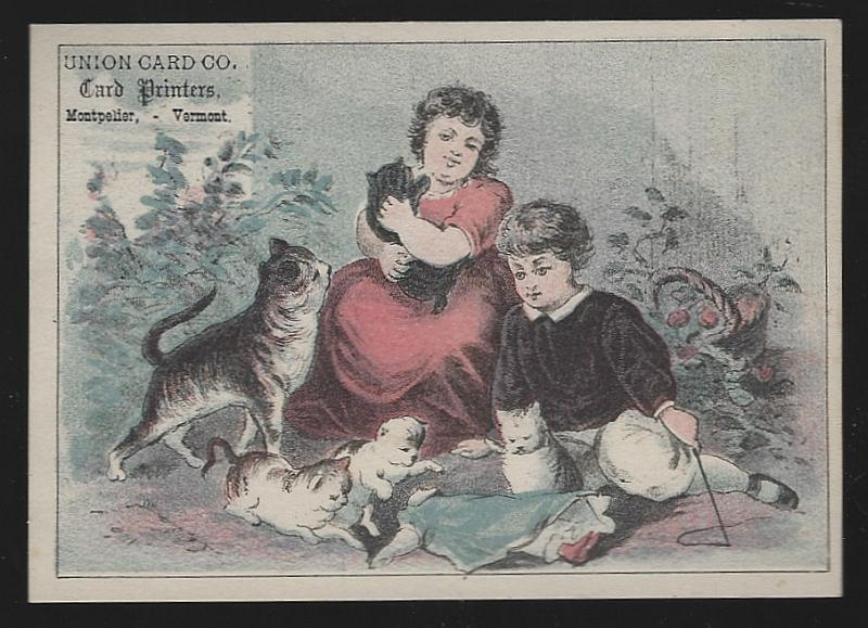 Victorian Trade Card for Union Card Co. With Boy and Girl Playing with Cat