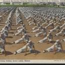 Physical Hardening Program U.S. Naval Training, Great Lakes Illinois Postcard