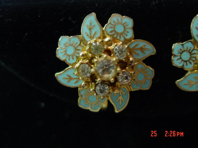 Karu Blue Enamel Rhinestone Flower Screwback Earrings