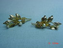 12K GF Leaf Spray Pearls Screwback Earrings