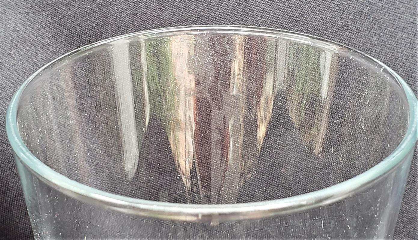 Vintage Lone Palm Country Club Tumbler Bar Glass Florida Golf Course 5.75