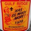 Vintage Boy Scout Mug 1978 Gulf Ridge Big Boy Wonderful World of Scouting