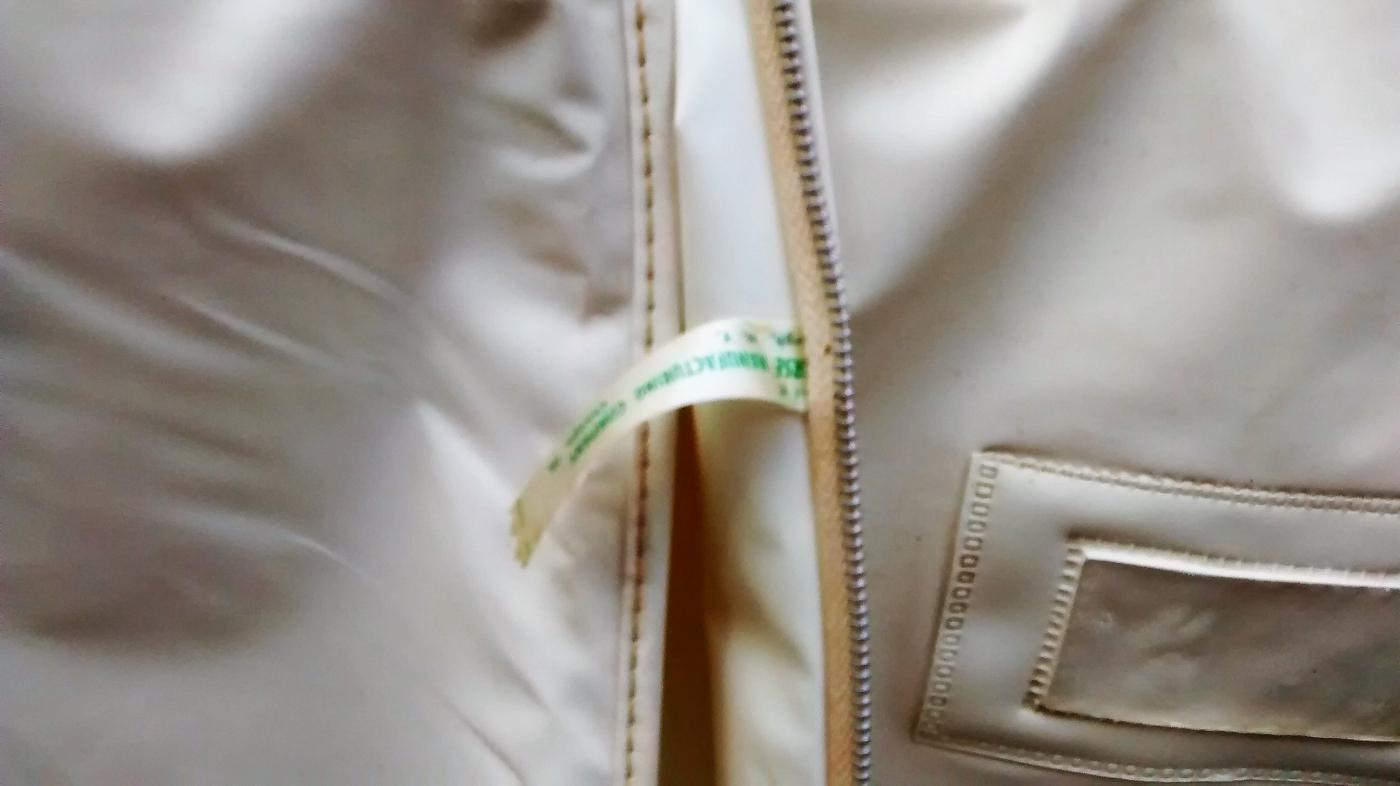 Vintage National Airlines Garment Bag Sun King Logo 1960s-70s Vinyl