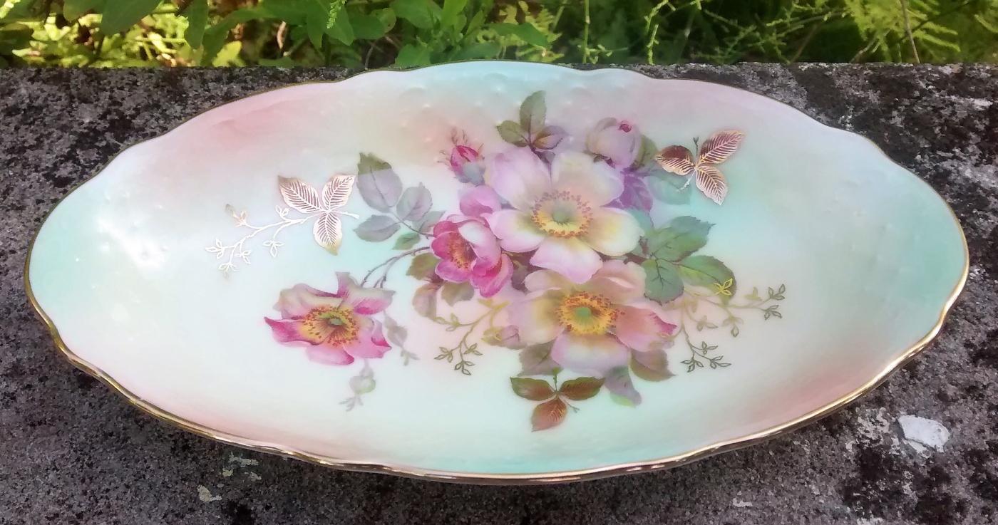 Vintage Schumann Bavaria Wild Rose Blush Relish Arzberg Germany