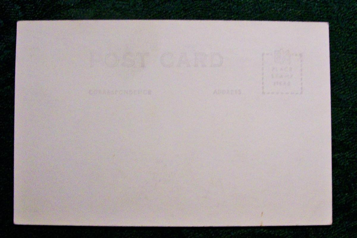 Vintage Circus Freak Postcard Fischers The Biggest Couple  B&W Photo Giants #A132 Campbell