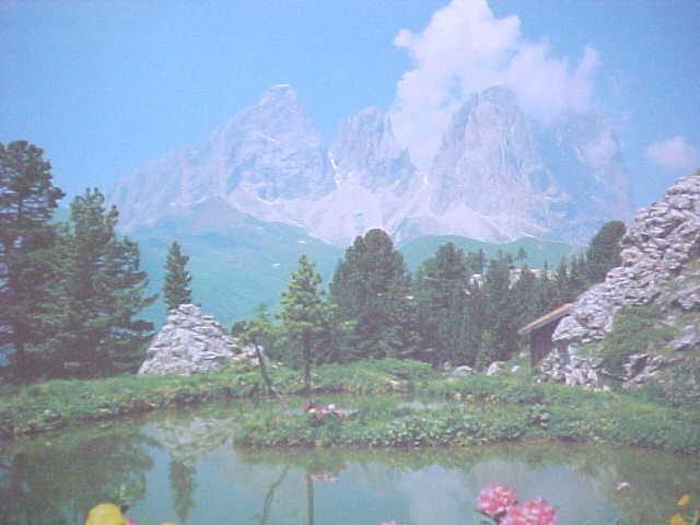 Puzzle Mountains Flowers Lake Germany Trefl