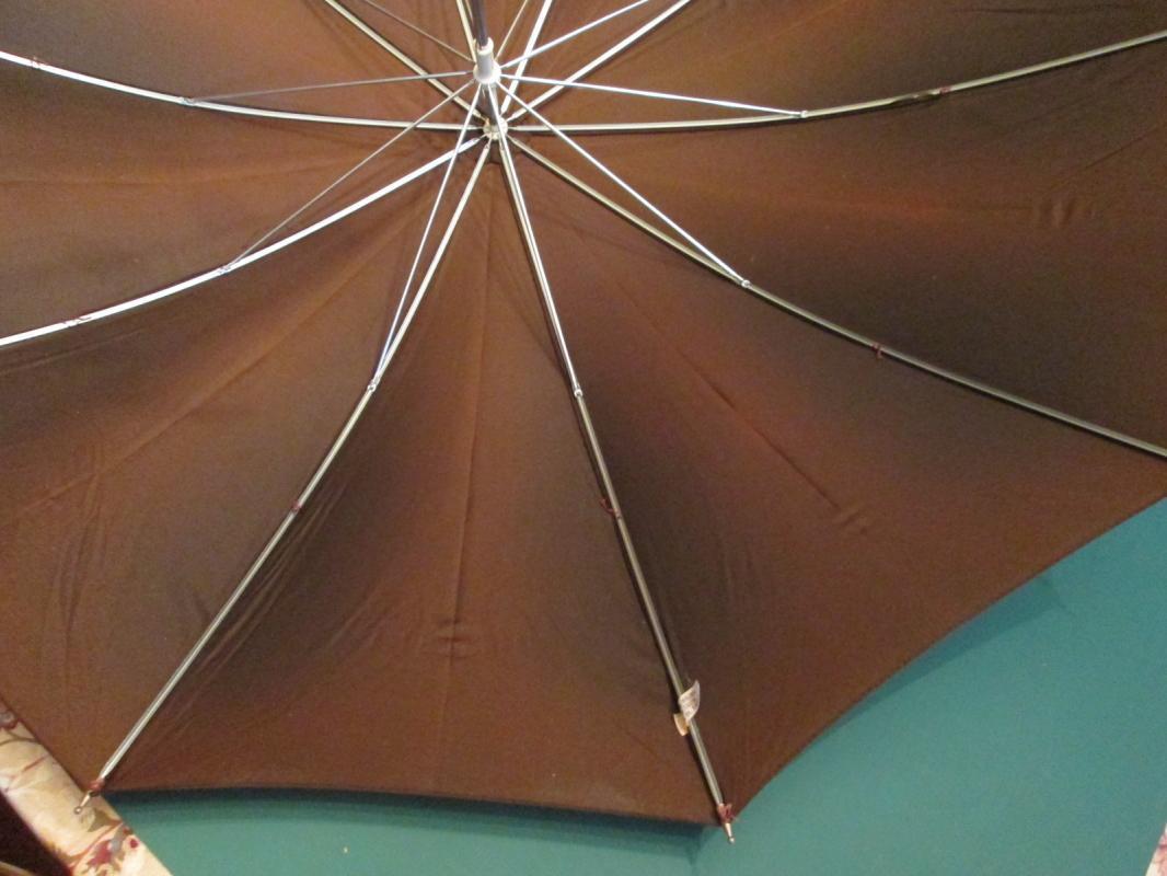 Umbrella Gold Mother of Pearl Victorian Ladies