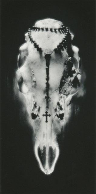 Ruth Bernhard: Skull and Rosary