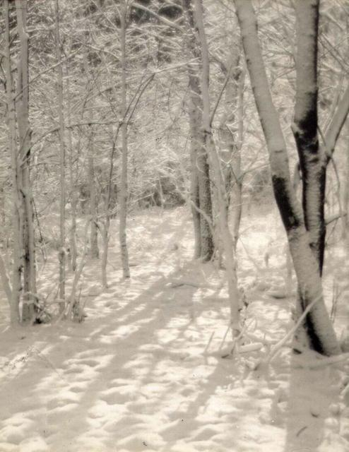Langdon H. Longwell: The Woods in Winter