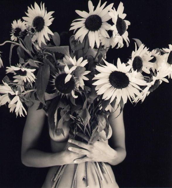Margaretta Mitchell: Sun Flowers I