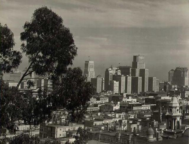 View from Telegraph Hill, San Francisco