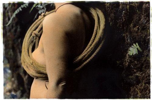Rebecca Martinez: 'Incidental Orbit' hand painted photograph