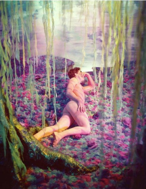 James Bidgood: untitled (54A 'Willow')